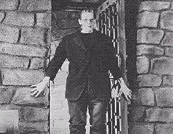 Frankenstein gothic essays